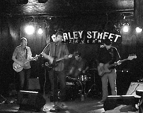 Lupines at The Barley Street Tavern, April 14, 2014.